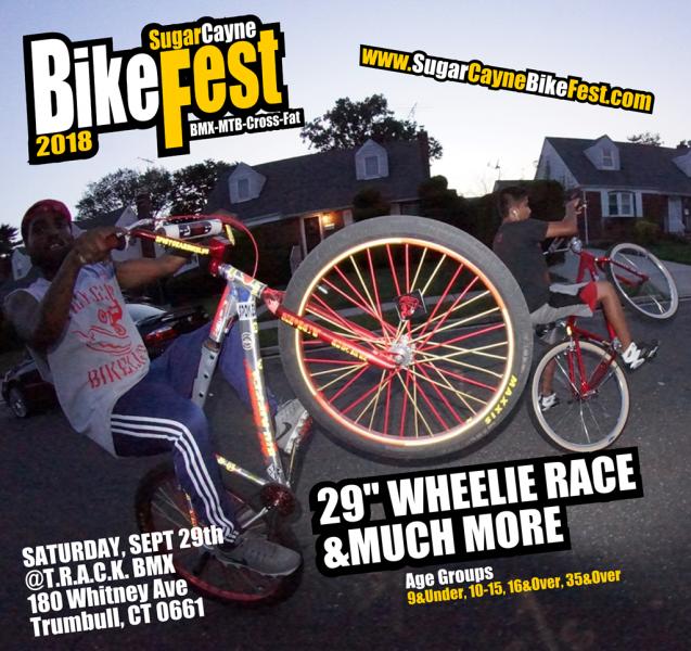 se bikes, wheelie race scbf